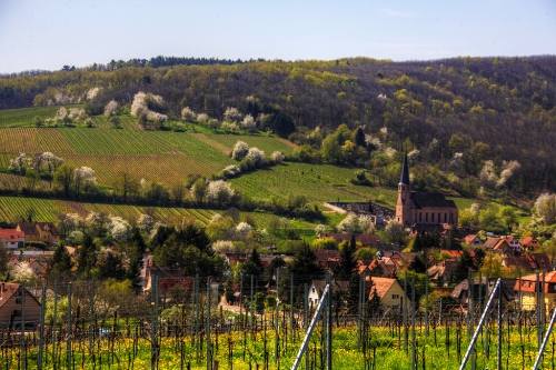 Alsace Coutryside France