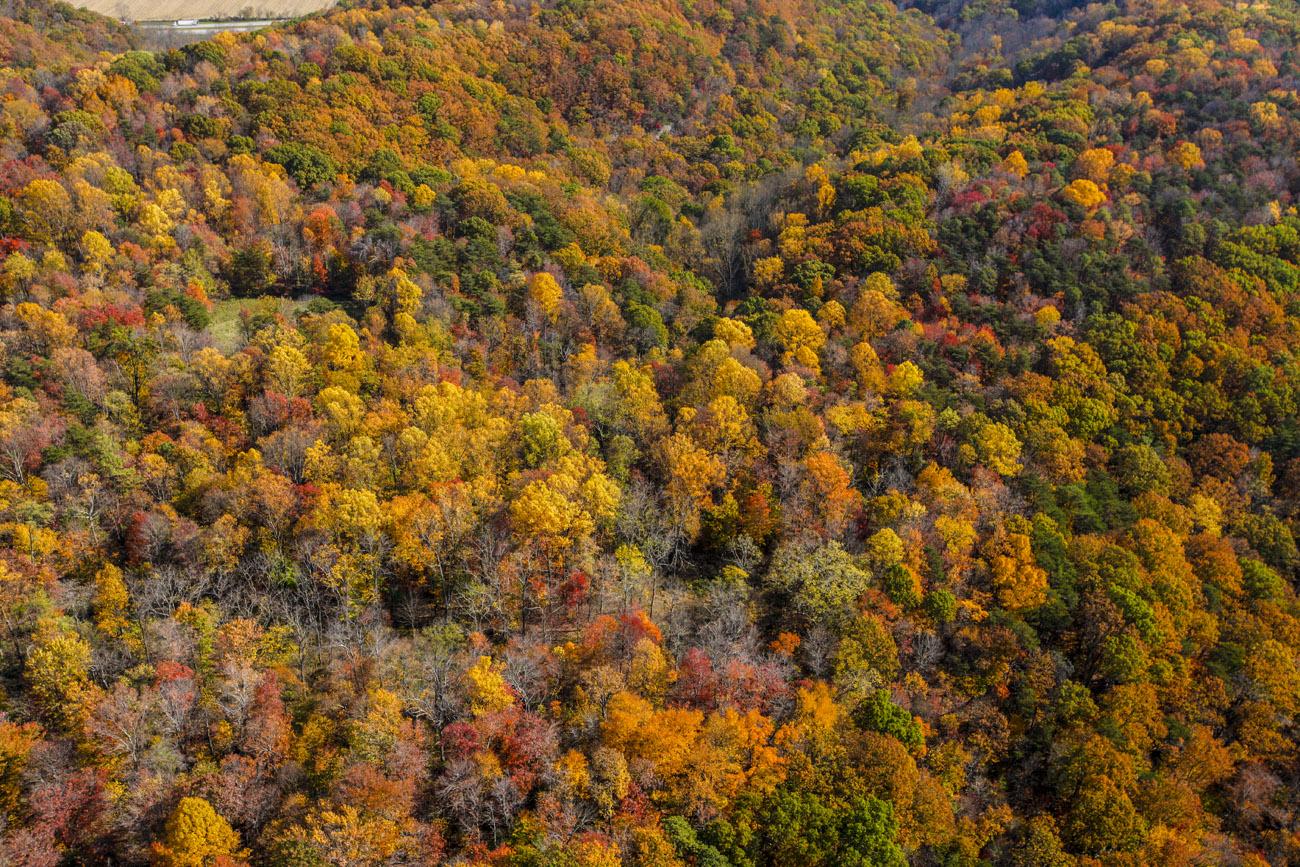Fall South East Ohio
